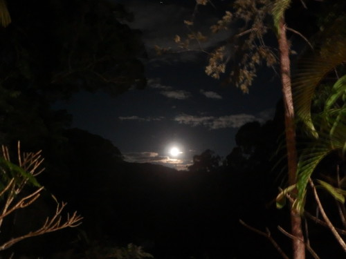 We are having a full moon at present and it is incrediable to watch it rise straight in front of our hom