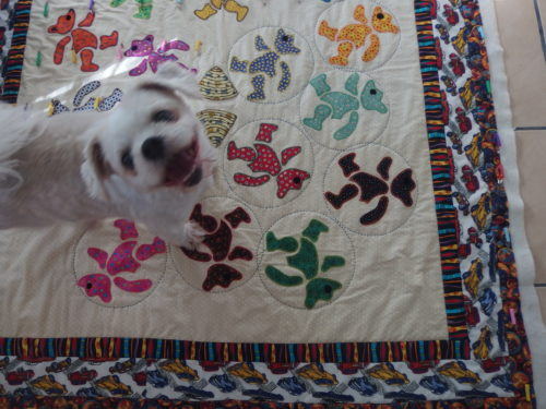 My little dog wanted to be in the photo and would not move LOL close up of the sashiko quilted hoops?